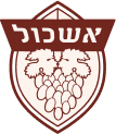 לוגו אשכול